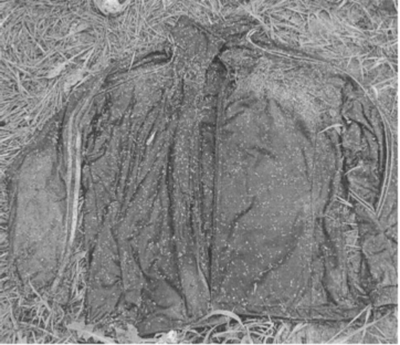 Нужна помощь тюменцев: полицейские нашли скелетированные останки