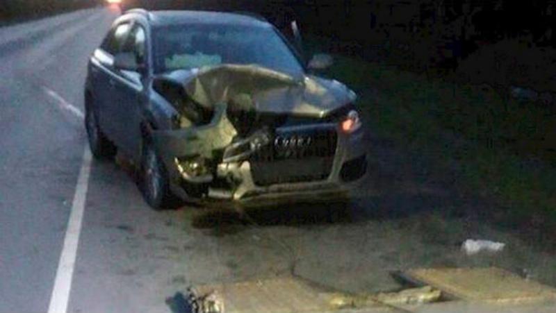На тюменской трассе водитель немецкой иномарки сбил медведя: зверь погиб