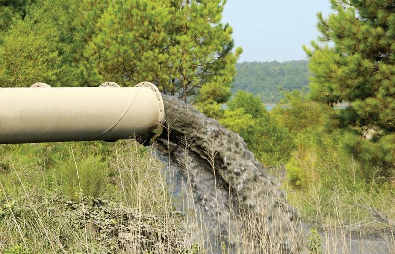 В Тюменской области племзавод оштрафовали за загрязнение озера и болота сточными водами