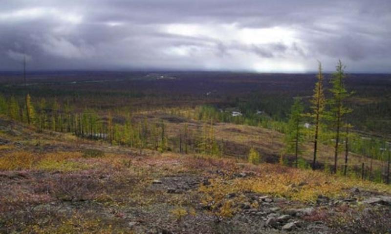 Ушла из чума и не вернулась: на Ямале пропала несовершеннолетняя девочка