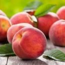 Как вырастить персик на своем участке