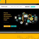 Профессиональная разработка веб и мобильных приложений