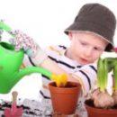 Топ 30 полезных растений для детской и детского сада + 13 опасных (ядовитых)